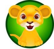 Sorriso engraçado do leão Fotografia de Stock Royalty Free