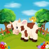 Sorriso feliz da vaca dos desenhos animados na exploração agrícola Foto de Stock Royalty Free