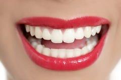 Sorriso perfeito dos dentes da mulher bonita imagens de stock