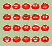 Sorriso sveglio del pomodoro del fumetto con molte espressioni CI Fotografie Stock