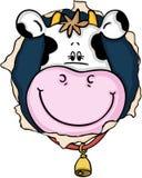 Sorriso sveglio della mucca sul foro illustrazione vettoriale