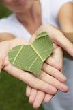 Sorriso verde del cuore Fotografie Stock Libere da Diritti