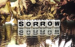 Sorrow. Text message with very old and withered flowers stock photos