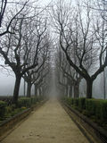 Sorrow alley in autumn in the fog. Mysterious Gothic. Stock Image