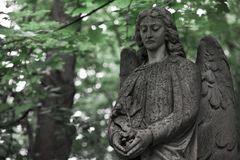 The Sorrowful Angel.The face of a grieving angel woman, space fo. The Sorrowful Angel. The tomb of the 19th century, the German introduced city of Moscow royalty free stock photos