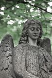 The Sorrowful Angel. Face of a grieving angel woman against a ba. The Sorrowful Angel. The tomb of the 19th century, the German introduced city of Moscow royalty free stock photography
