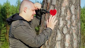 Sorrowful man holding knife and fabric heart near the tree stock video