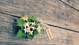 Sorry background. With white tiny flower on old wooden, I'm so sorry text is message when make hurt for someone royalty free stock photography