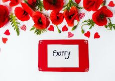 Sorry card with poppy flowers on white background. Top view royalty free stock photography