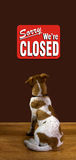Sorry We Are Closed. Puppy looking at sorry we are closed sign Stock Photos