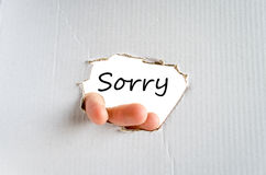 Sorry Concept. Hand and text on the cardboard background Sorry Concept royalty free stock photos