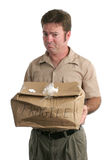 Sorry Delivery Man. A delivery man holding out a smashed package and looking very sorry. Isolated stock photography