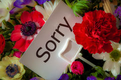 Sorry message card in flowers. Close up of bouquet of flowers with message card: Sorry Stock Image