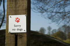 Sorry no dogs. Sign saying sorry no dogs attached to a wooden post with trees in the background Stock Image