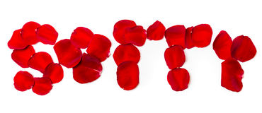 Sorry of rose petals isolated on white. Word Sorry of rose petals isolated on white royalty free stock image