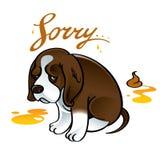 Sorry sad puppy dog. Pet shame shit urine Stock Photo