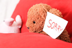 Sorry sign on bear hand. Brown bear holds sorry sign sleep near rabbit Royalty Free Stock Image