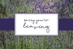 Sorry you're leaving card in purple written over lavender field. Sorry youre leaving card  purple written over  lavender field design flowerd flowers royalty free stock photography