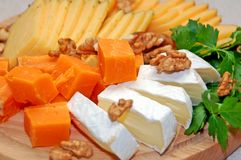 Sort of the cheese. On the wooden board royalty free stock image