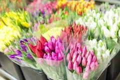 Sort de bouquets multicolores de tulipes Marché ou magasin de fleur Fleuriste en gros et au détail Service de fleuriste Jour de f image stock