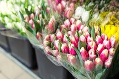Sort de bouquets multicolores de tulipes Marché ou magasin de fleur Fleuriste en gros et au détail Service de fleuriste Jour de f photographie stock