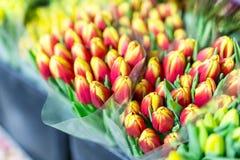 Sort de bouquets multicolores de tulipes Marché ou magasin de fleur Fleuriste en gros et au détail Service de fleuriste Woma photos stock