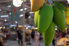 Sort de mangue mûre de ferme de récolte Photographie stock libre de droits