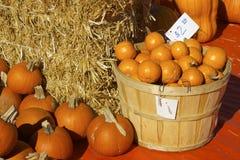 Sort de potirons oranges dans le panier et le prix à payer américain Photos libres de droits