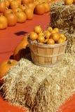 Sort de potirons oranges dans le panier hors des portes Photo libre de droits