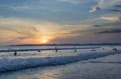 Sort de surfers attendant des vagues à la plage pendant le temps de coucher du soleil photo libre de droits