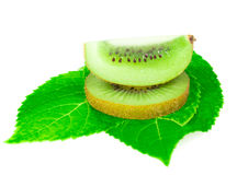 Sort kiwi fruit on leave isolated. Sort kiwi fruit on leaves and white background royalty free stock image