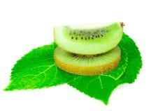 Sort kiwi fruit on leave isolated. Sort kiwi fruit on leaves and white background Royalty Free Stock Image
