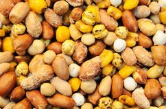 Sort of nuts Royalty Free Stock Photo