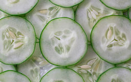 Sort sliced. Cucumber for background Stock Image