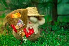 Sorte da mascote da casa foto de stock royalty free