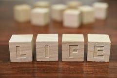 Sorte escrita no cubo de madeira Fotografia de Stock Royalty Free