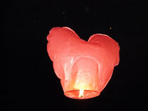 Sorte pequena da lâmpada do ar bonito do coração vermelho Fotos de Stock