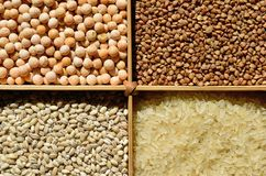 Sorted cereals: buckwheat, rice, peas, pearl barley. Wholesome food. Dietary and vegetarian cereals. Healthy diet royalty free stock image