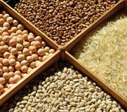 Sorted cereals: buckwheat, rice, peas, pearl barley. Wholesome food. Dietary and vegetarian cereals. Healthy diet Stock Image