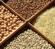 Sorted cereals: buckwheat, rice, peas, pearl barley. stock image