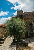 Sortelha historical mountain village, built within Medieval fortified walls, included in Portugal`s Historical village. Route. Olive grove in foreground royalty free stock photography