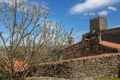 Sortelha-Schloss Stockbilder