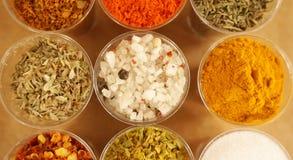 Sorterade kryddor och torkade örter för att laga mat mat, från över royaltyfri bild