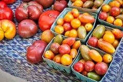 Sorterade tomater på försäljning på bönder marknadsför arkivfoto