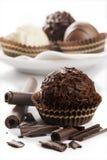 Sorterat av fina choklader Royaltyfri Fotografi