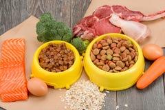 Sorterat dalta mat och ingredienser royaltyfri bild