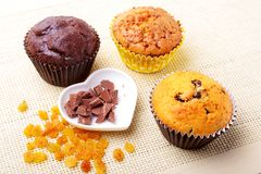 Sorterat med läckra hemlagade muffin med russin och chokladchiper som isoleras på textilbakgrund muffiner överkant arkivbilder