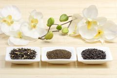 Sortes do chá verde Fotos de Stock Royalty Free