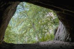 Sortez d'une caverne, pousse de l'intérieur Photographie stock