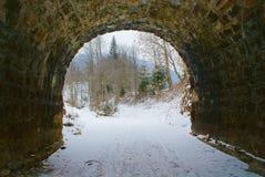 Sortez du vieux tunnel en pierre à la forêt Photos libres de droits